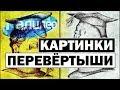 #Галилео   Картинки-перевертыши 🖼 [Pictures-shifters]