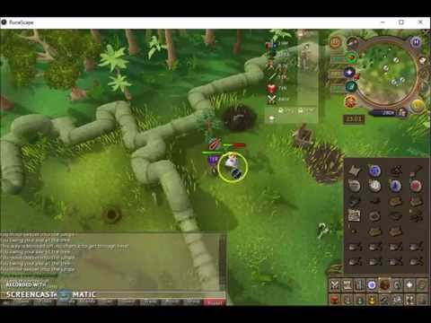 08 DEGREES 05 MINUTES SOUTH 15 DEGREES 56 MINUTES EAST | CLUE SCROLL HELP | RUNESCAPE
