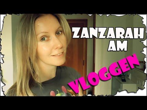 Zanzarah am Vloggen #48 Vlies für die Wände | Wohnungsupdate | VLog