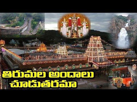తిరుమల తిరుపతి అందాలు చూడతరమా | Tirumala Tirupati Devastanam #9RosesMedia