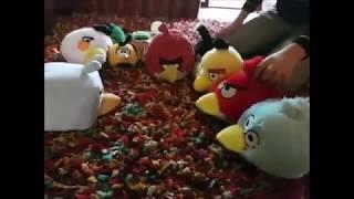 """Peluche TV - Angry Birds """"El viaje"""""""