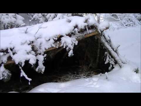 Lost Hunter Survival shelter  after a winter storm, update