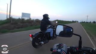 Rebel 500 and Vulcan S Comparison