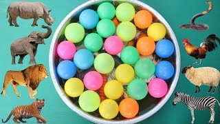 Let's Learn Names of Animals | Toys Animals for Kids | Some balls for kids