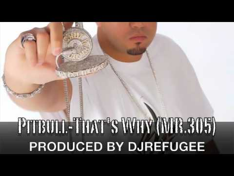 Pitbull-That's Why (MR.305)-Produced By DJREFUGEE Video