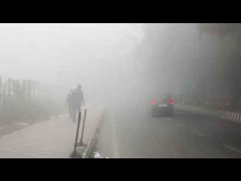 Severe cold grips North India; dense fog hits flights and trains in Delhi