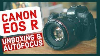 Canon EOS R Footage & Autofocus Test (60p Video & Sample Photos)