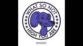 What So Not High You Are The Only Remix