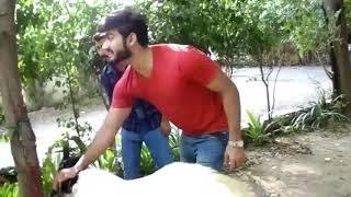 Funny Video Bakra Eid Speacial