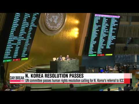 UN committee passes human rights resolution calling for N. Korea′s referral to I