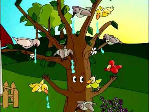 El viejo rbol cuento infantil youtube for Medio en el que habitan los arboles