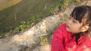Yaourt chinh phục xương sống khủng long trên Tà Xùa
