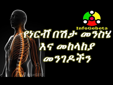 Ethiopia Health Tips - Causes and Protection of Nerve Pain and Nerve Damage