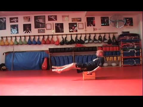 Leo Rios Ejercicios Pliometricos y Funcionales para artes marciales 1