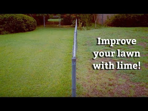 Applying Lime Treatments to your Lawn -- Expert Lawn Care Tips