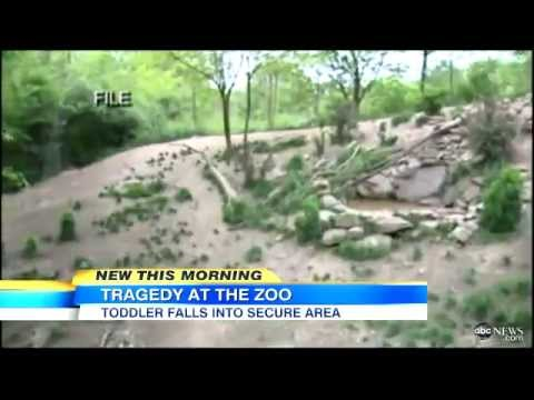 Toddler Killed After Fall In Zoo (pa) video