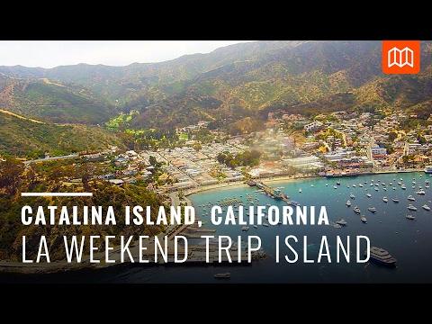 Mike & Jay Shorts: Catalina Island