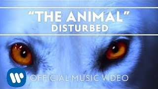 Watch Disturbed The Animal video