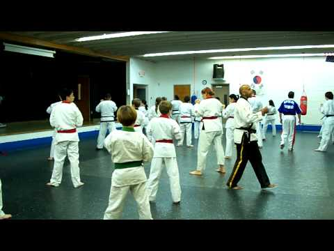 Norwalk Tang Soo Do basic techniques Image 1