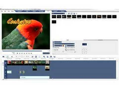 Ulead VideoStudio Video Tutorial - Ripple Editing