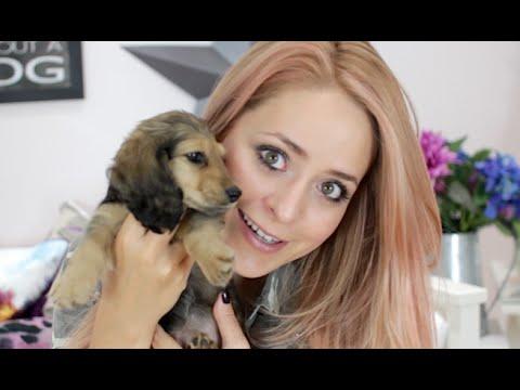 Meet PIGLET + Puppy Haul!