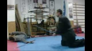 骨法術 * 剣術 [Koppo Jutsu & Ken] TAIKAI GERMANY APRIL 2013 Trailer 02