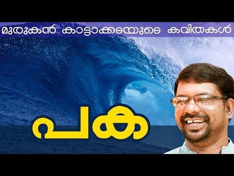 Murukan Kattakada Kavithakal | Paka video