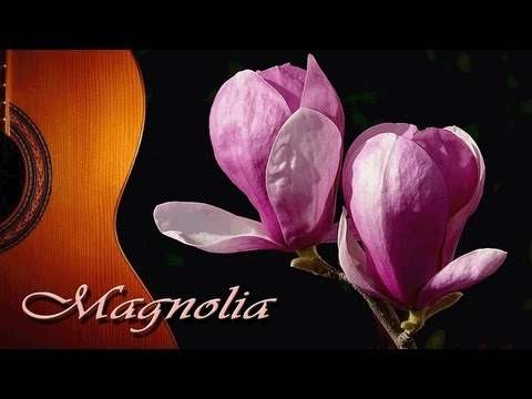 0 Magnolia   Classical Guitar by FMGuitar