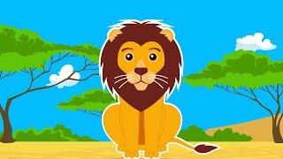 Про львов для детей - мультик (видео) про диких животных Африки, саванны для детей - Amaze Kids