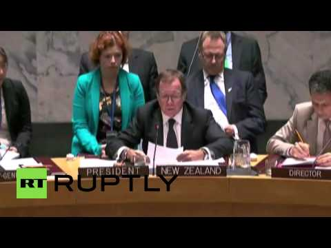 USA: Russia vetoes MH17 tribunal at UN Security Council