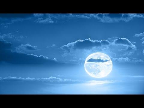 Deep Sleep Music, Peaceful Music, Relaxing, Meditation Music, Sleep Meditation Music, 8 Hour, �