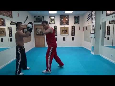 FMK Focus Mitt Training / Martial Arts Cardio Exercise Image 1