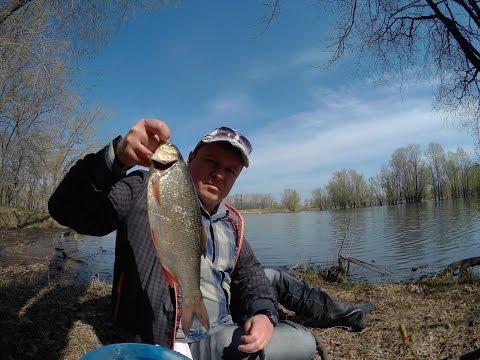канал охота и рыбалка ловля уклейки