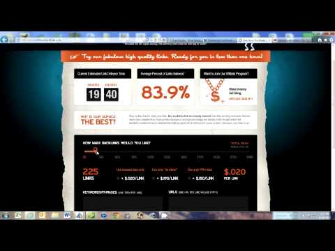 SEO-One Hour Backlinks Review. Burt Steingraeber Consultant Milwaukee Wisconsin