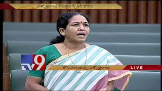Question hour begins in AP Assembly Budget Session