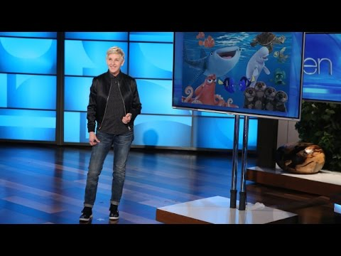 Ellen's Comments on the Travel Ban