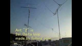 Vertical VS 2el Deltaloop on 28MHz