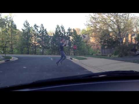 If Humans Crossed the Street Like Animals