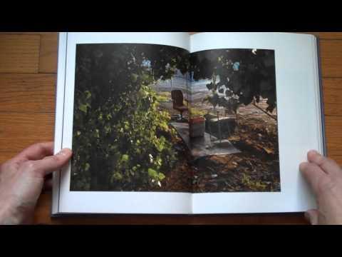 Presenting Disquiet by Amani Willett