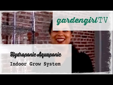 Hydroponic Aquaponic Indoor Grow System