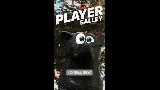 "Salley - インスタグラムストーリーズにより作成された""プレイヤー""のMVを公開 新譜「PLAYER」PHOTOBOOK CD 2018年5月5日発売 thm Music info Clip"