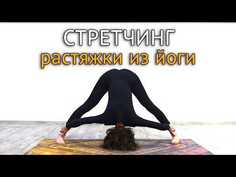 Стретчинг: комплекс упражнений из йоги в домашних условиях
