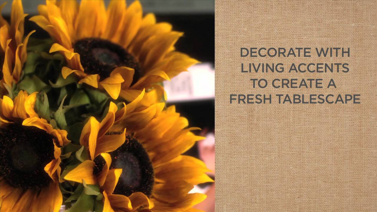 A Simple Style Guide To Coffee Table Decorations Pottery Barn YouTube