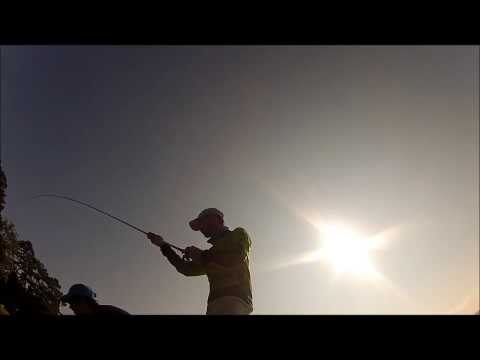 evobowhunter: bass fishing lake guntersville day 2