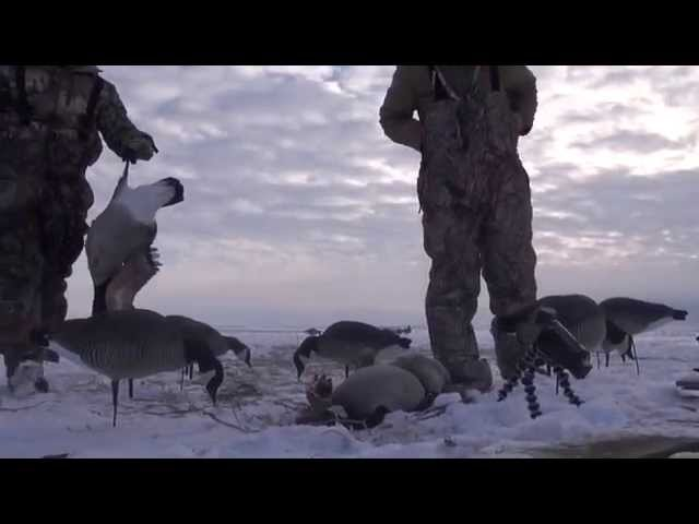 Run2Gun TV Episode 8 Late Season SD Goose Hunt