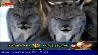 On The Spot Terbaru - Kutub Utara VS Kutub Selatan