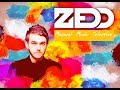Lagu Zedd Mix 2019 - 2018 | Best of Zedd | Zedd True Color | Zeed Drops Only