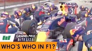 GP Bitesize - Who's Who in F1 2016?
