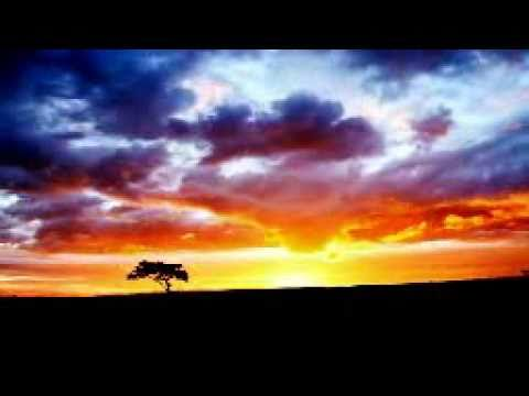 When the last tree The Kelly Family instrumental protest song Mandragora