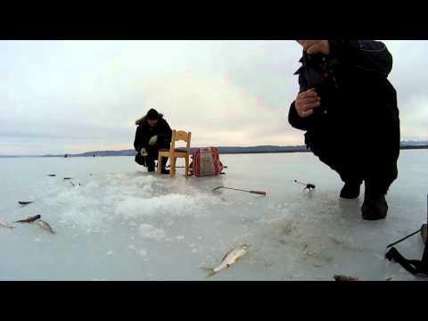 рыбалка на катакеле
